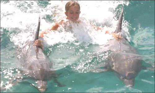 Open Ocean Dolphin Swim - Freeport $219 for 2.5 hours